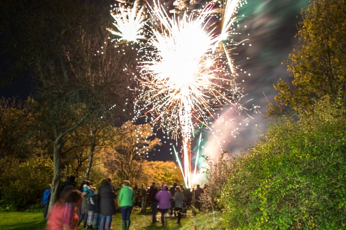 10th Romsey Scouts Firework Evening Sponsored by BDW Southampton
